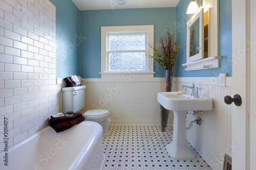 Fotomural Antique luxury design of blue bathroom