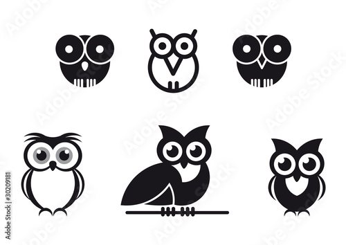 Canvas Prints Owls cartoon gufi stilizzati