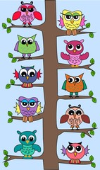 Plakat colourful owls sitting in a tree