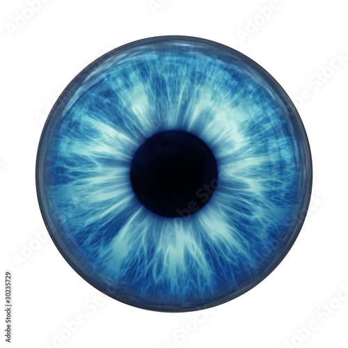 Cuadros en Lienzo  blue eye
