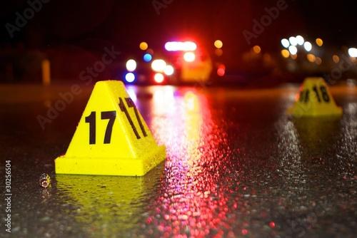 Fotografie, Obraz  Police Action