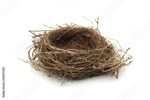 Foto op Aluminium Vogel Empty bird nest