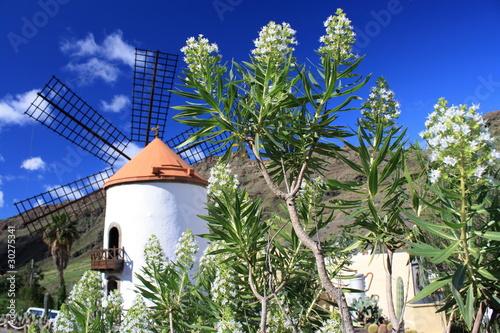 Foto op Aluminium Molens Molino de Viento - Gran Canaria