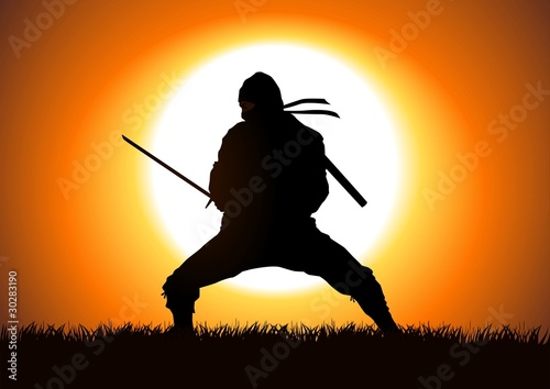 Silhouette illustration of a Ninja on grass field Wallpaper Mural