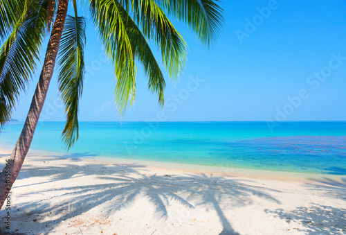 Keuken foto achterwand Strand tropical beach with coconut palm
