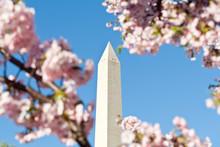 Washington Monument Surrounded...
