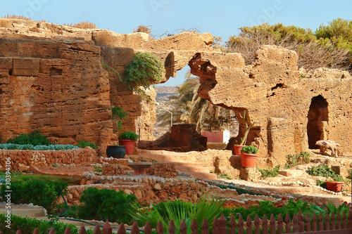 Fotografie, Obraz  Scorcio di Cirene - Libia