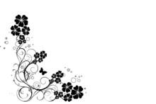 Coion Floral Noir