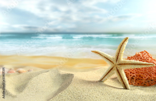 "Community Maske ""army blue"" - Starfish on the Beach (von silvae)"
