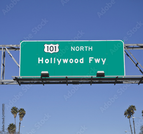 Photo 101 Hollywood Fwy with Palms