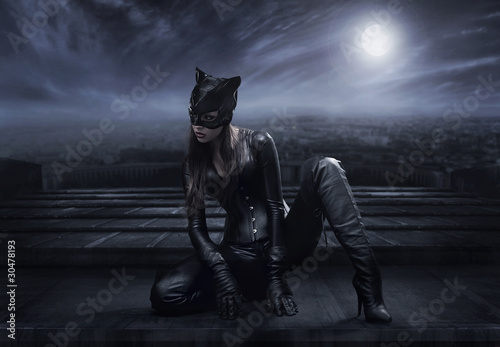 Fotografie, Obraz  Catwoman sitting on the roof