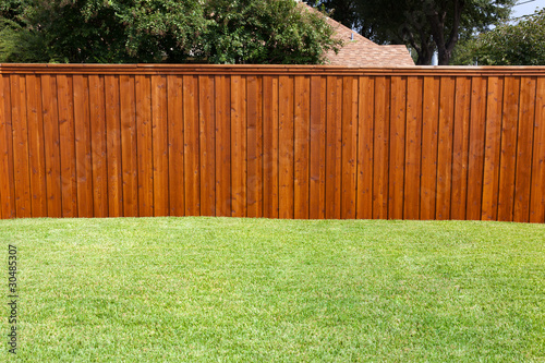 Backyard Fence