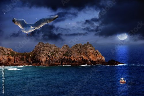 Photo Stands Full moon Seagull flight