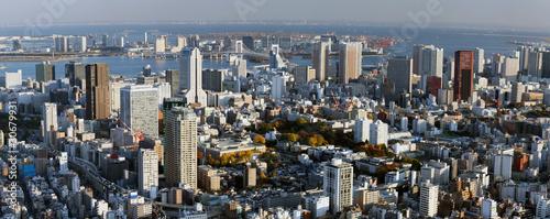 Staande foto Tokyo Tokyo Bay Panorama