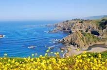 Central California Coast 8