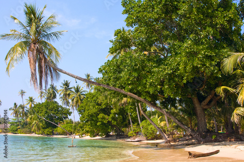 Photo  Beautiful tropical beach in Koh Mak , Thailand