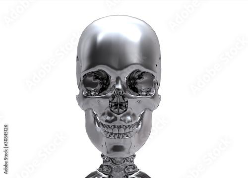 Photo  silver Human skull