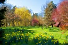 Whatton Gardens Spring