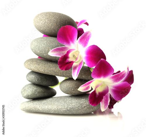 Fototapeta Orchids on stacked stones obraz na płótnie