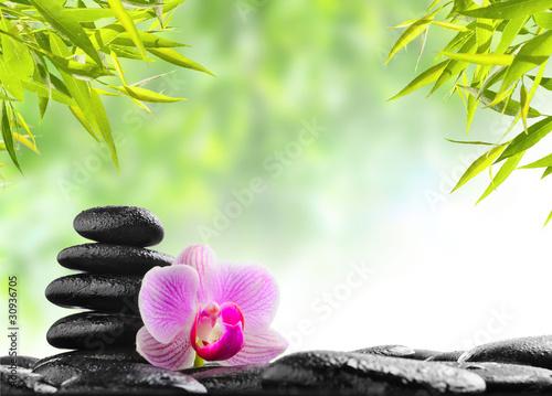 stos-kamieni-z-rozowa-orchidea-spa
