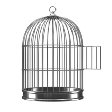 3d Silver Bird Cage With Open ...