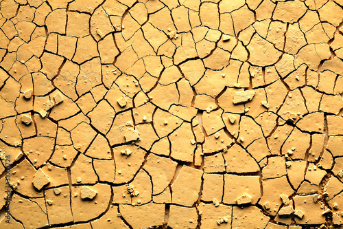 Fotografie, Obraz  Dried cracked earth
