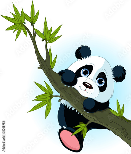 Printed kitchen splashbacks Fairytale World Giant panda climbing tree