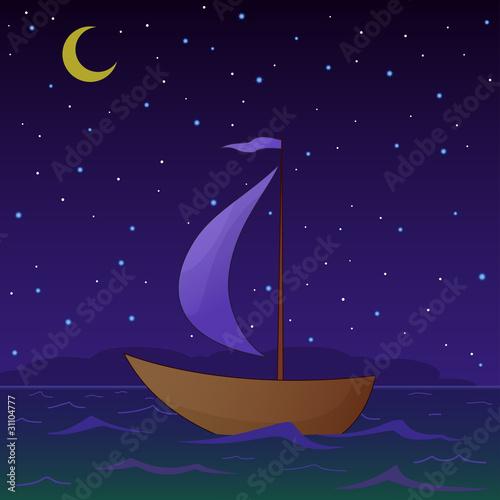Fotografie, Obraz  Ship floats at night