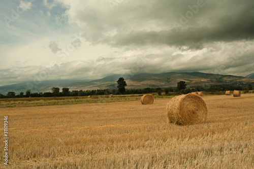 Photo Stands Melon Испанский пейзаж/Spanish Landscape