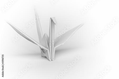 bialego-papieru-ptak-na-bialym-tle-plytka-glebia-pole