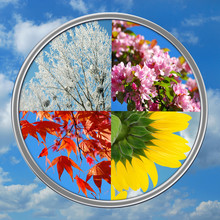 Four Seasons Of The Year On Sky Background