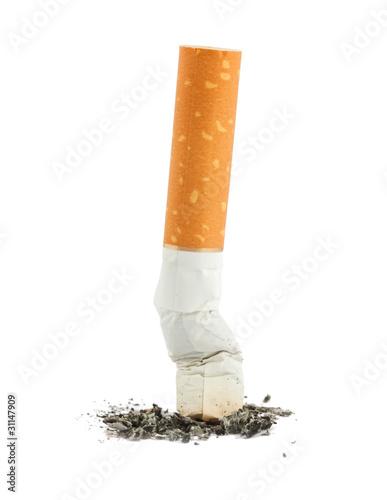Fényképezés  Single cigarette butt with ash