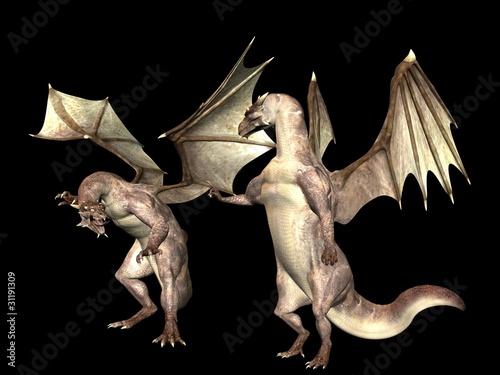 Poster Draken Dragon lecture
