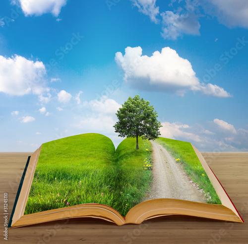 Fotografie, Obraz  magic book with a landscape