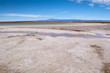 Laguna de Cejar, Chile