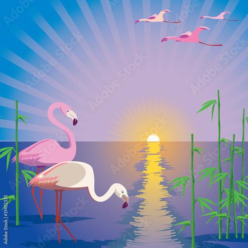Poster Oiseaux, Abeilles Flamingo