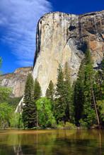 Monolith El Capitane In Yosemite NP, California, USA