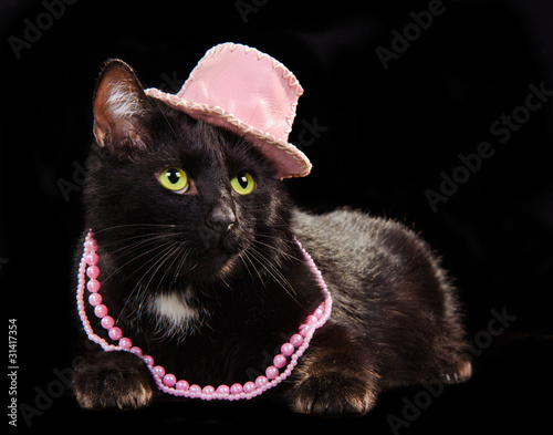 In de dag Panter Black cat wearing pink hat and beads, against black background