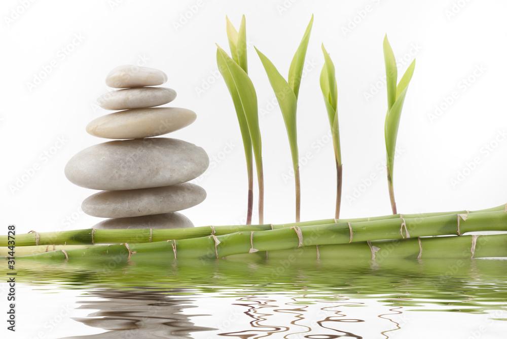 Plissee mit Motiv - foglie di mughetto con pietre  e bambù