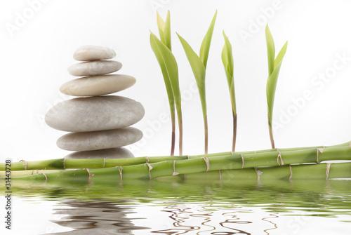 Doppelrollo mit Motiv - foglie di mughetto con pietre  e bambù