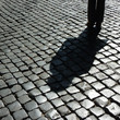 canvas print picture - Ein Schatten!
