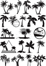 Palm  And Coconut Trees Vector...