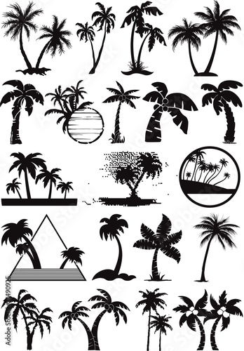 Photo palm  and coconut trees vector silhouette