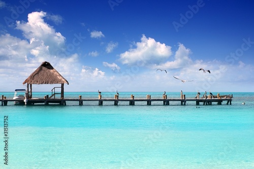 Photo Stands Caribbean Caribbean tropical beach cabin pier Contoy island
