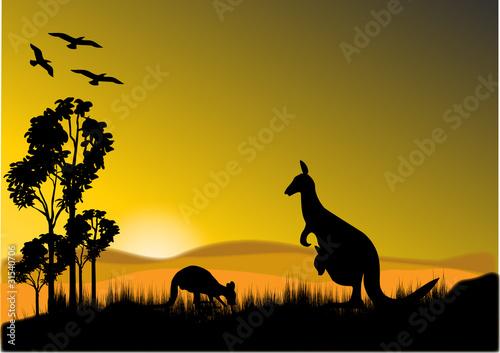 Garden Poster Brown kangaroo sunset horizion