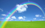 Fototapeta Tęcza - Green grass and red roof house and rainbow