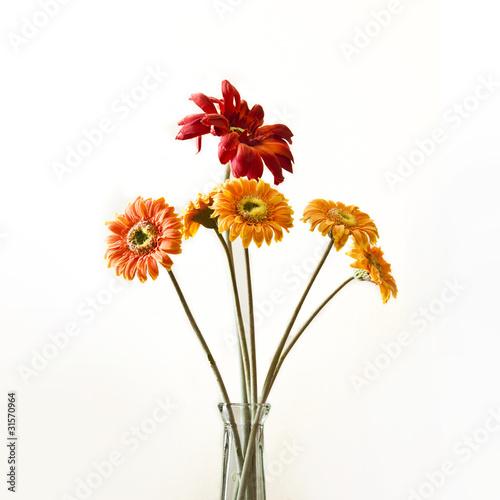 Poster de jardin Dahlia fleurs artificielles