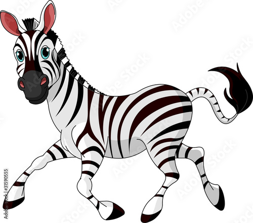 Fototapeta Funny running   Zebra obraz