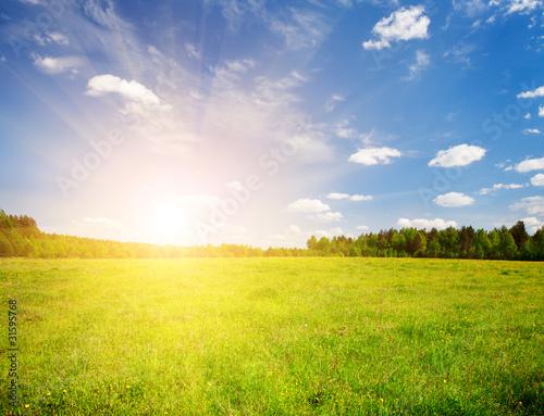 Foto auf Gartenposter Landschappen green field and beautiful sunset