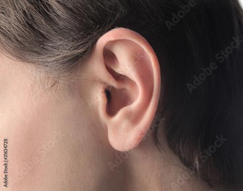 Fotografija Ear